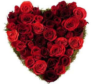 Un bouquet de rose rouge en forme de cœur